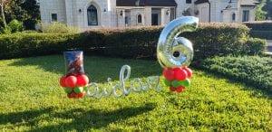 Aiden turns 6 birthday yard celebration balloon decor
