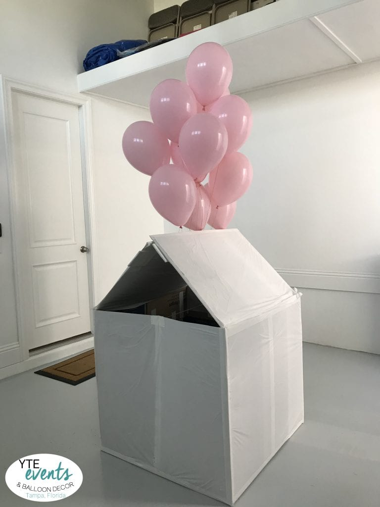 Box Gender Reveal for event