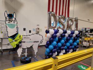 DSR1 Amazon Tampa Palmetto Columns Blue Navy White Quick Spiral Llama