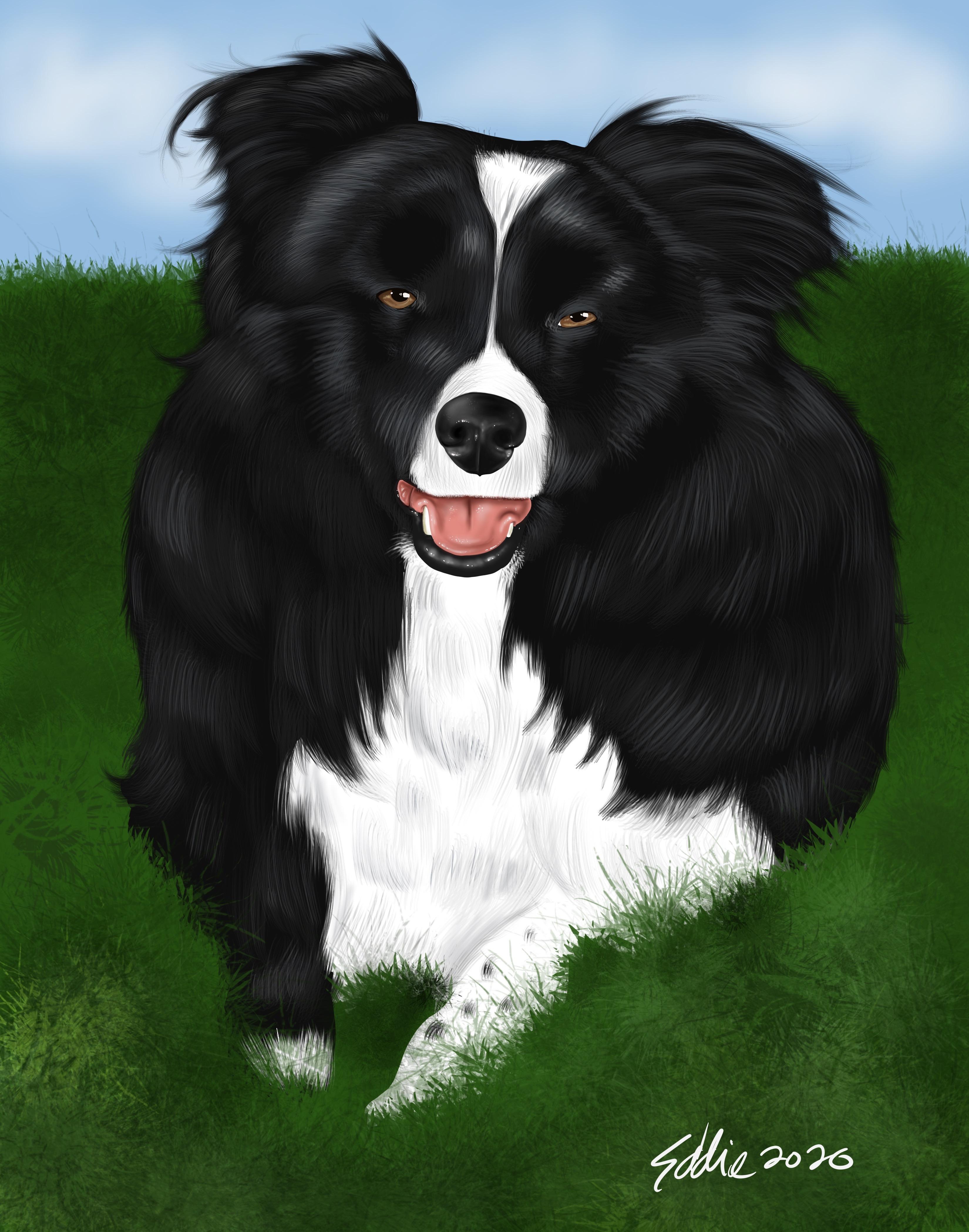 Caricature of pet puppy dog digital portrait